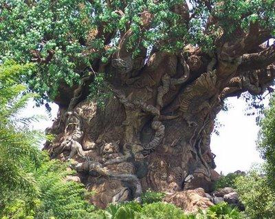 pohon_6